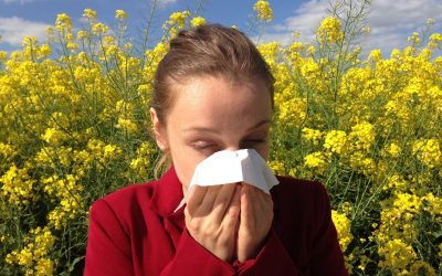 Can A Chiropractor Help Alleviate Allergy Symptoms?